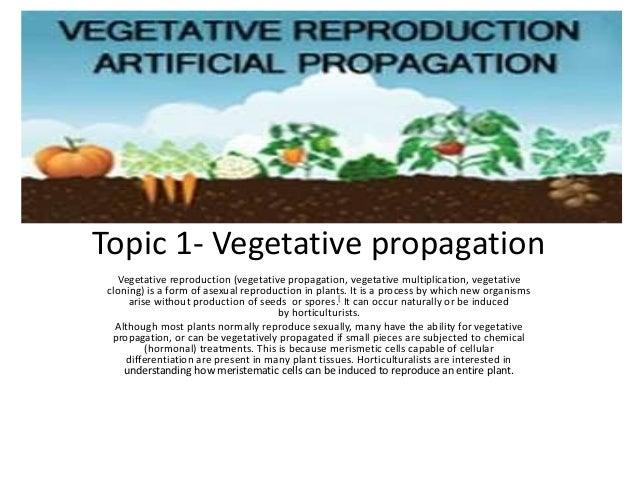 Topic 1- Vegetative propagation Vegetative reproduction (vegetative propagation, vegetative multiplication, vegetative clo...