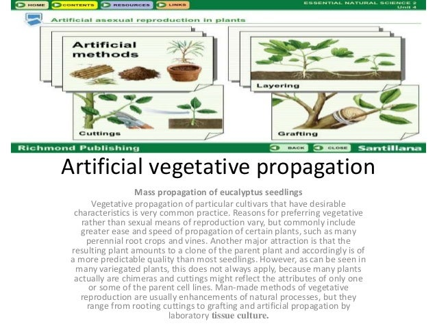 Artificial method of asexual reproduction in plants