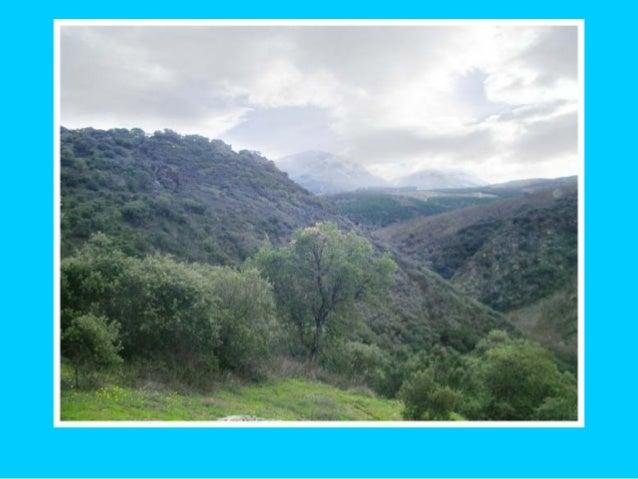 San Miguel de las Dueñas - Vegetación y clima