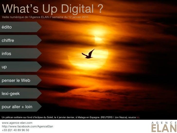 What's Up Digital ? Veille numérique de l'Agence ELAN // semaine du 12 janvier 2011 Un pélican solitaire sur fond d'éclips...