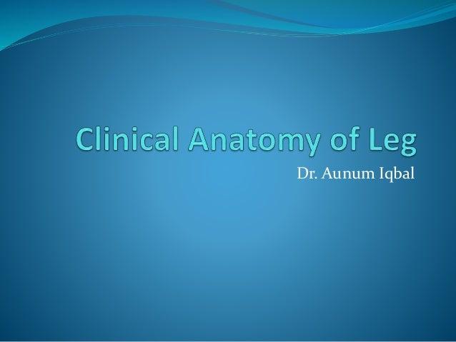 Dr. Aunum Iqbal