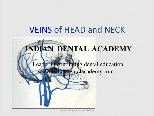 VEINS of HEAD and NECK INDIAN DENTAL ACADEMY Leader in continuing dental education www.indiandentalacademy.com  www.indian...