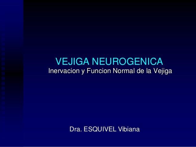 VEJIGA NEUROGENICA Inervacion y Funcion Normal de la Vejiga Dra. ESQUIVEL Vibiana