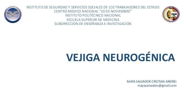 """INSTITUTO DE SEGURIDAD Y SERVICIOS SOCIALES DE LOS TRABAJADORES DEL ESTADO CENTRO MEDICO NACIONAL """"20 DE NOVIEMBRE"""" INSTIT..."""