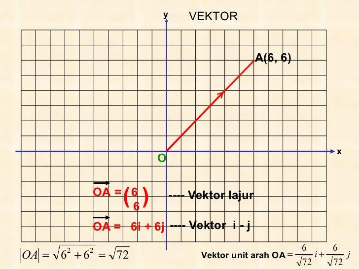 Vektor(tg5)