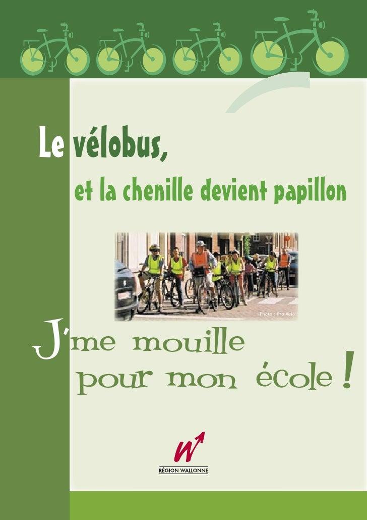 Le vélobus,    et la chenille devient papillon    J'me mouille                         Photo : Pro Velo        pour mon éc...