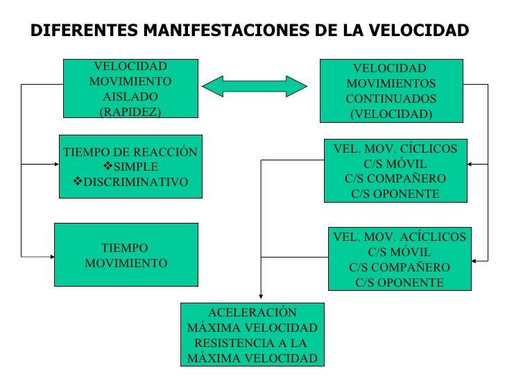 DIFERENTES MANIFESTACIONES DE LA VELOCIDAD VELOCIDAD MOVIMIENTO AISLADO (RAPIDEZ) VEL. MOV. CÍCLICOS C/S MÓVIL C/S COMPAÑE...