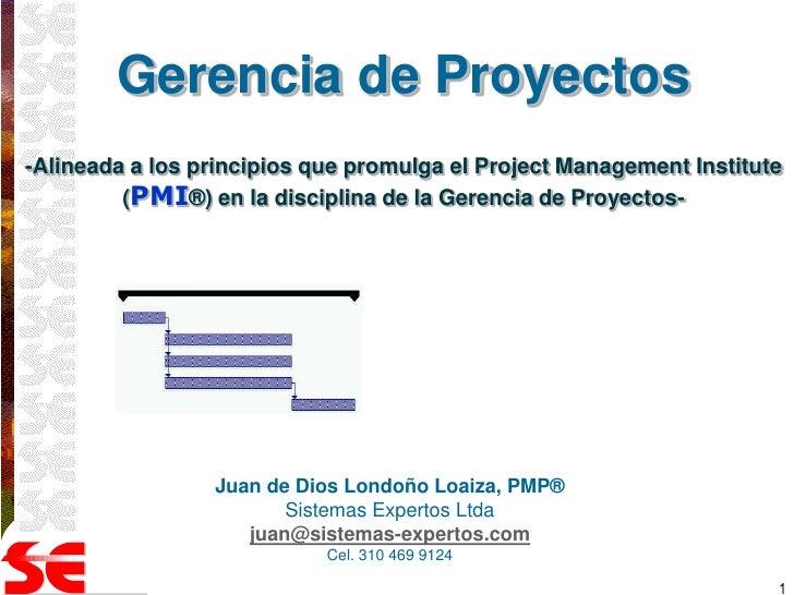 Gerencia de Proyectos-Alineada a los principios que promulga el Project Management Institute         (PMI®) en la discipli...