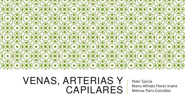 VENAS, ARTERIAS Y CAPILARES Peter García Mario Alfredo Flores Iriarte Melissa Parra González