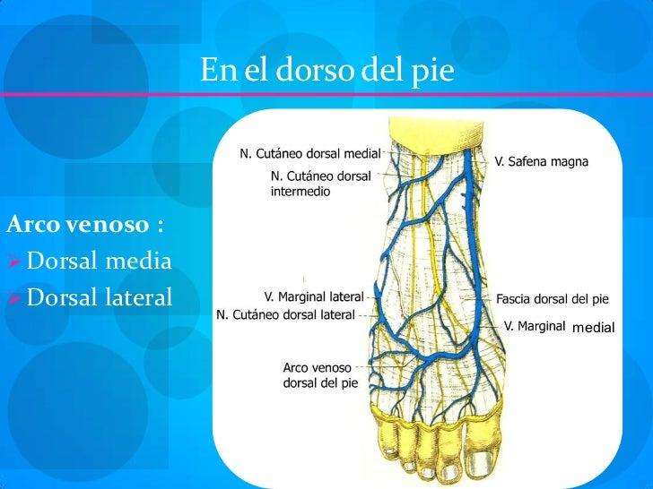 Los síntomas de la trombosis de la arteria