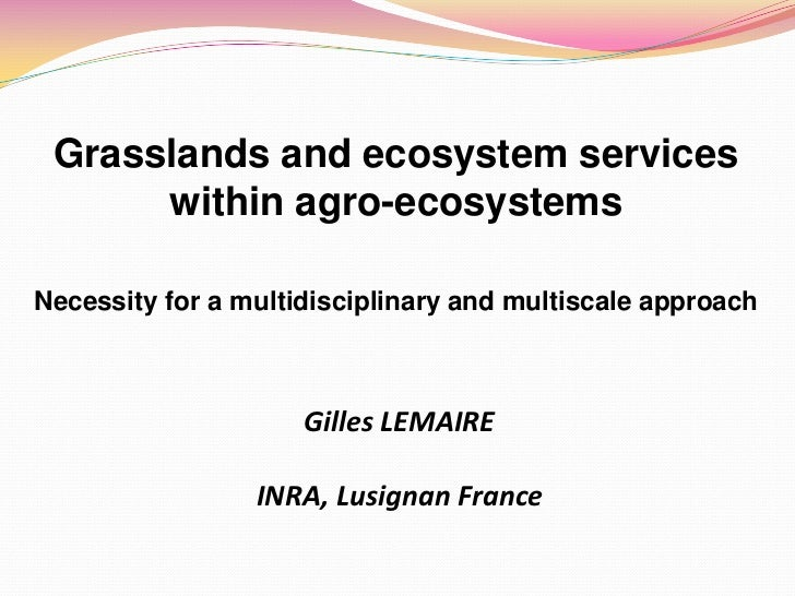 Grasslands and ecosystem services      within agro-ecosystemsNecessity for a multidisciplinary and multiscale approach    ...