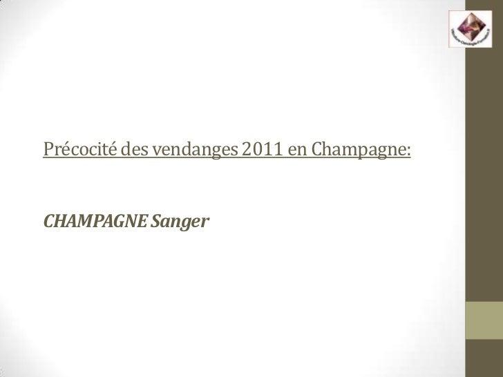 Précocité des vendanges 2011 en Champagne:CHAMPAGNE Sanger