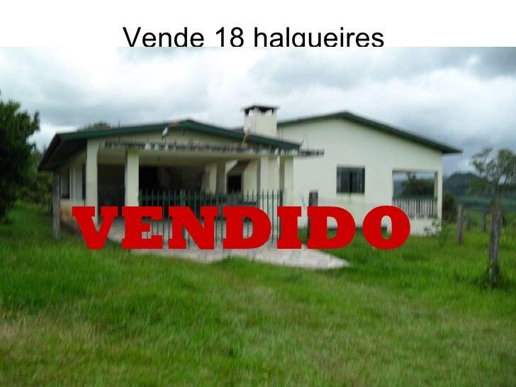Vende 18 halqueires VENDIDO
