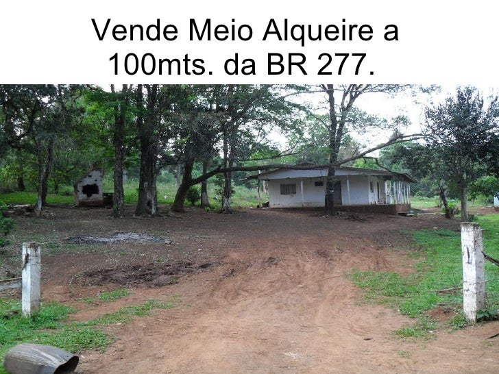Vende Meio Alqueire a 100mts. da BR 277.