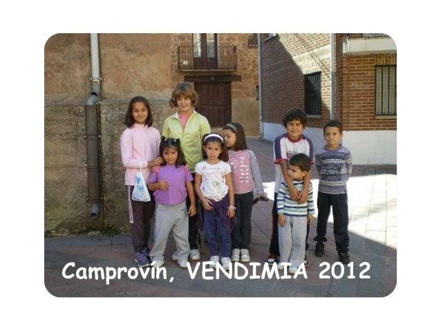 Camprovín, VENDIMIA 2012