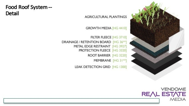 Green Roofs How To Add This Value Enhancing Amenity In