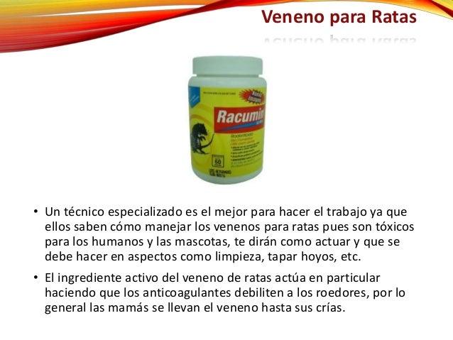 Veneno para ratas - El mejor veneno para ratones ...