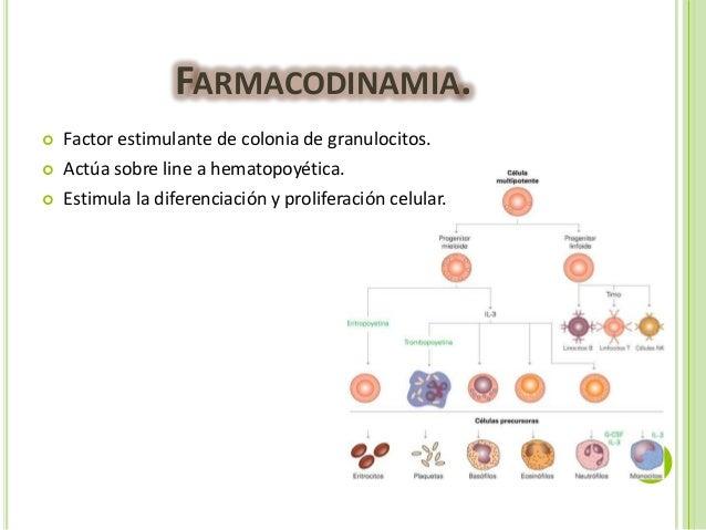 alimentos que no se pueden comer con acido urico alto la clara de huevo produce acido urico que no se puede comer con el acido urico