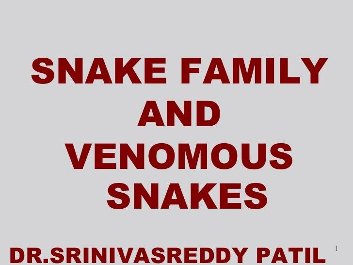 <ul><li>SNAKE FAMILY </li></ul><ul><li>AND  </li></ul><ul><li>VENOMOUS SNAKES </li></ul><ul><li>DR.SRINIVASREDDY PATIL </l...