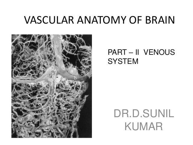 Venous anatomy of brain - Radiology