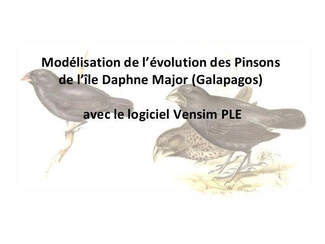 Modélisation de l'évolution des Pinsons  de l'île Daphne Major (Galapagos)  avec le logiciel Vensim PLE