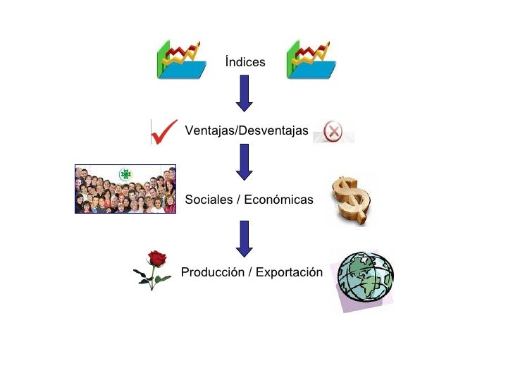 Índices Ventajas/Desventajas Sociales / Económicas Producción / Exportación