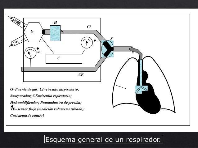 Circuito Para Respirador Vela: Armado de ventiladores