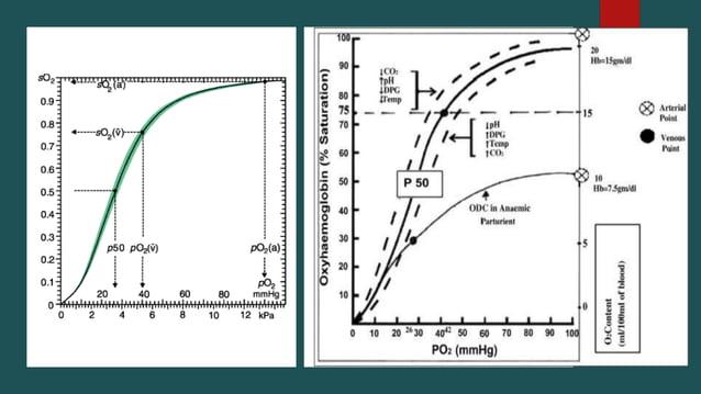  Increased alveolar ventilation  Increased Hb production  Increase in 2,3 DPG  Increase in diffusing capacity of lungs...