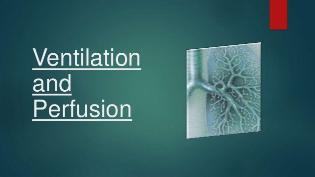  Def:- Usually measured as a sum of all exhaled gas volume in one min.(minute ventilation) Minute Ventilation V = RR x VT...