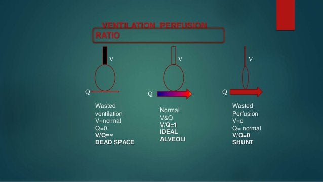  MEANS – WASTED PERFUSION  SHUNT – 1. ABSOLUTE SHUNT : ANATOMICAL SHUNTS – V/Q = 0 2. RELATIVE SHUNT : UNDER VENTILATED ...