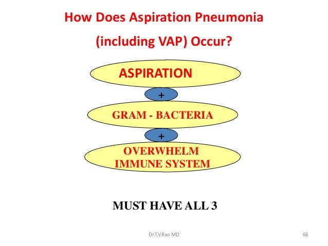 associated ventilator pneumonia prevention research Abstract ventilator-associated pneumonia is one of the most commonly encountered nosocomial infections in the intensive care units and is associated with high morbidity and high costs of care inspite of extensive studies for decades, a clear diagnostic and prevention strategy is still eluding ventilator- associated.