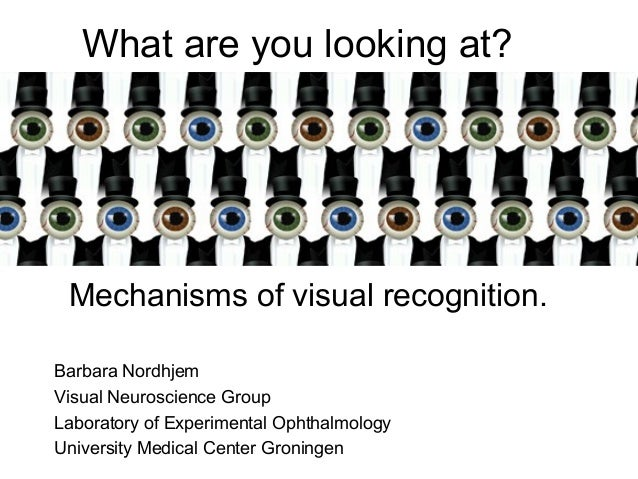 What are you looking at? Mechanisms of visual recognition.Barbara NordhjemVisual Neuroscience GroupLaboratory of Experimen...