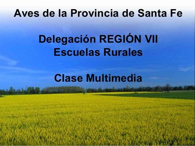Aves de la Provincia de Santa Fe Delegación REGIÓN VII Escuelas Rurales Clase Multimedia