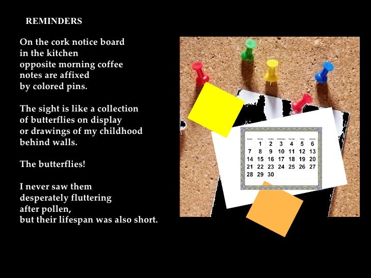 On the cork notice board in the kitchen opposite morning coffee notes are affixed by colored pins. The sight is like a col...