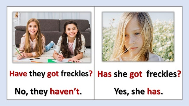 Have they got freckles? No, they haven't. Has she got freckles? Yes, she has.