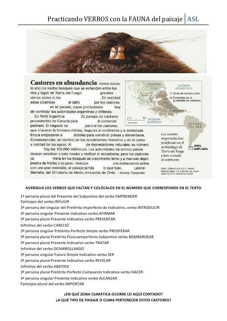 Practicando VERBOS con la FAUNA del paisaje ASL  AVERIGUA LOS VERBOS QUE FALTAN Y COLÓCALOS EN EL NÚMERO QUE CORRESPONDE E...