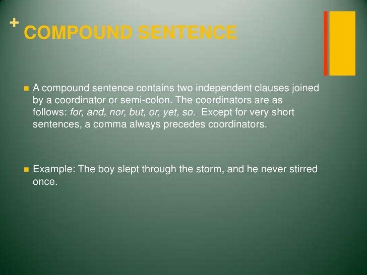 Verbs And Sentences