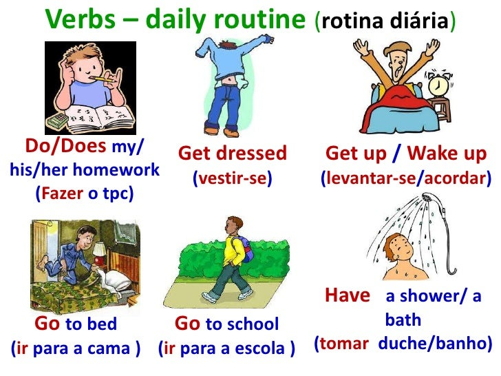 essays students daily routine