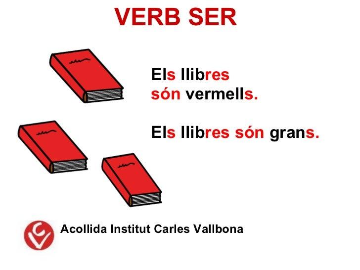 VERB SER                Els llibres                són vermells.                Els llibres són grans.Acollida Institut Ca...