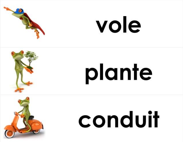 vole plante conduit