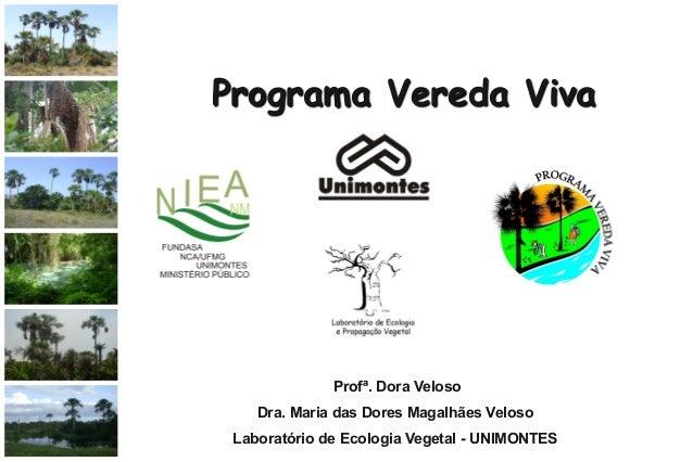 Programa Vereda Viva Profª. Dora Veloso Dra. Maria das Dores Magalhães Veloso Laboratório de Ecologia Vegetal - UNIMONTES