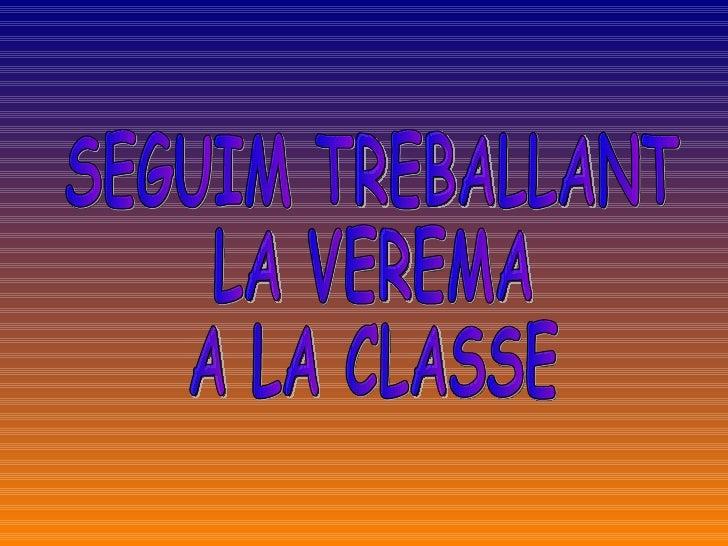 SEGUIM TREBALLANT  LA VEREMA  A LA CLASSE