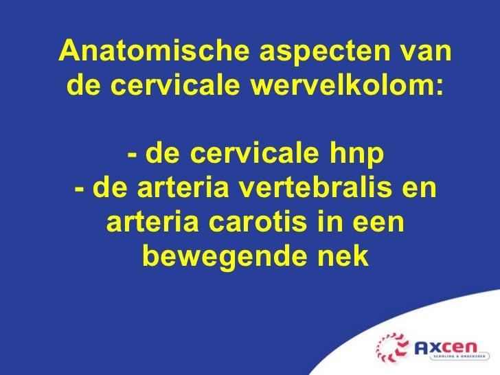 Anatomische aspecten van de cervicale wervelkolom: - de cervicale hnp - de arteria vertebralis en arteria carotis in een b...