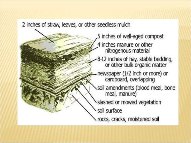Vermiculture Techniques And Advantages