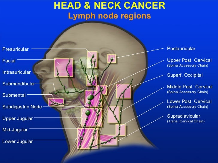 What are the symptoms of cancer in the lymph glands?
