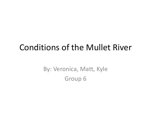 Conditions of the Mullet River      By: Veronica, Matt, Kyle              Group 6