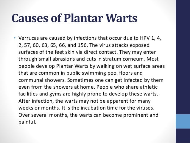 Causes of Plantar Warts • Verrucas are caused by infections that occur due to HPV 1, 4, 2, 57, 60, 63, 65, 66, and 156. Th...