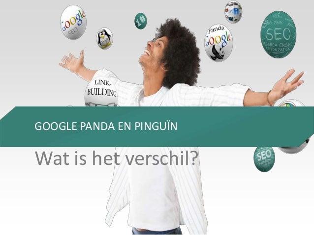 GOOGLE PANDA EN PINGUÏN  Wat is het verschil?