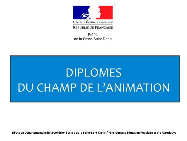 DIPLOMES DU CHAMP DE L'ANIMATION DIPLOMES DU CHAMP DE L'ANIMATION Direction Départementale de la Cohésion Sociale de la Se...