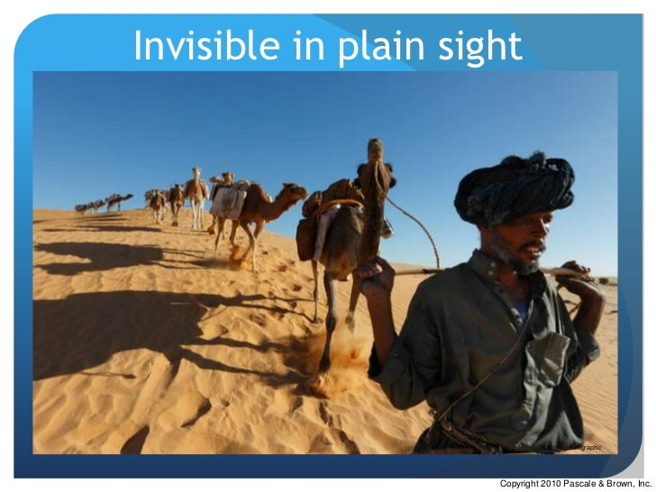 Invisible in plain sight                               National Geographic                      Copyright 2010 Pascale & B...